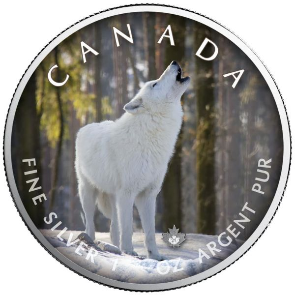 5 Dollar Kanada Trails of Wildlife - Polarwolf 2021 Silber St