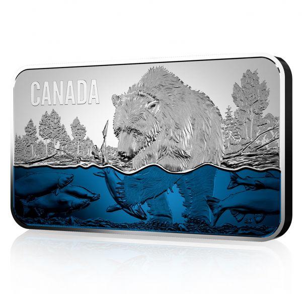 """25 $ Kanada """"Lachswanderung"""" 2019 Silber PP"""