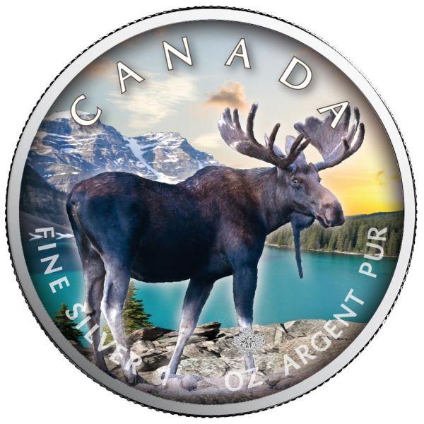 5 Dollar Kanada Trails of Wildlife - Elch 2021 Silber St