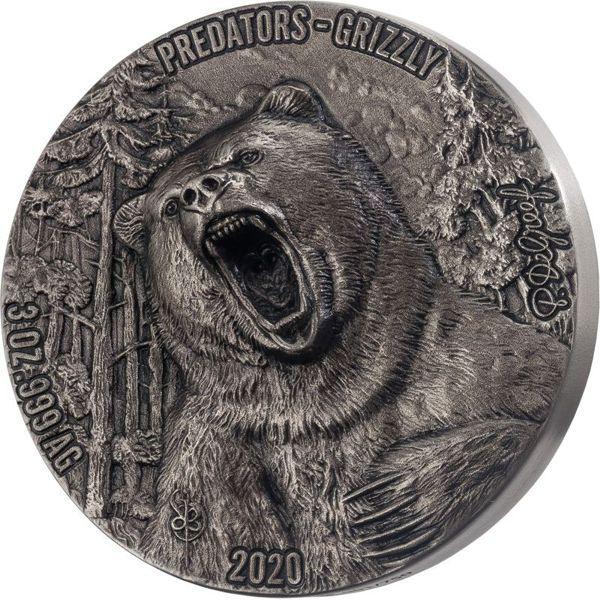 5.000 Francs Elfenbeinküste Grizzly 2020 Silber AF