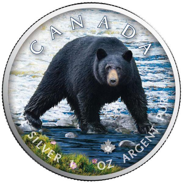 5 Dollar Kanada Trails of Wildlife - Schwarzbär 2021 Silber St