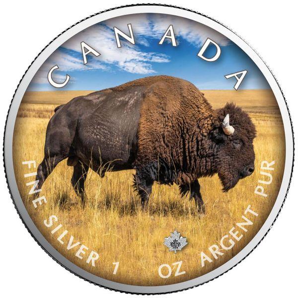 5 Dollar Kanada Trails of Wildlife - Bison 2021 Silber St