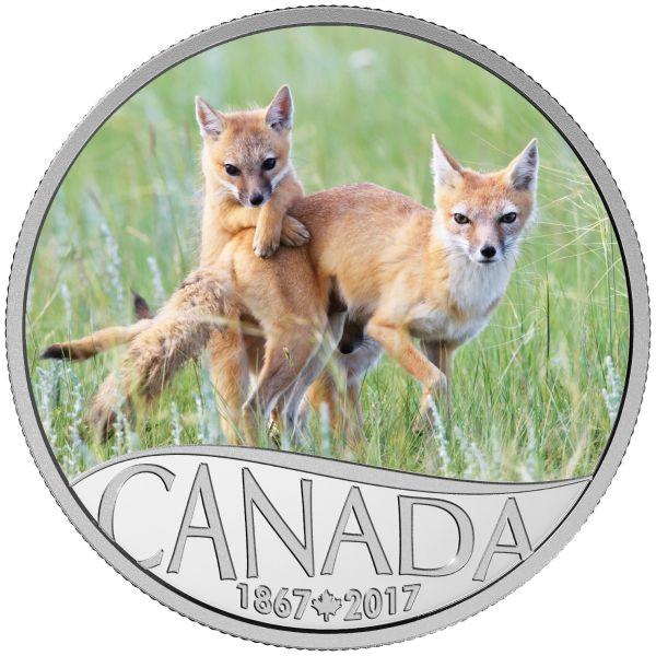 """10 $ Kanada """"Wildfuchs mit Welpen"""" 2017 Ag -farbig- PP"""