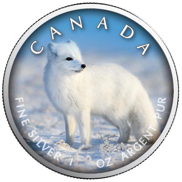 5 Dollar Kanada Trails of Wildlife - Polarfuchs 2021 Silber St