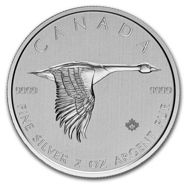 10 Dollar Kanada Kanadagans 2020 2oz Silber St