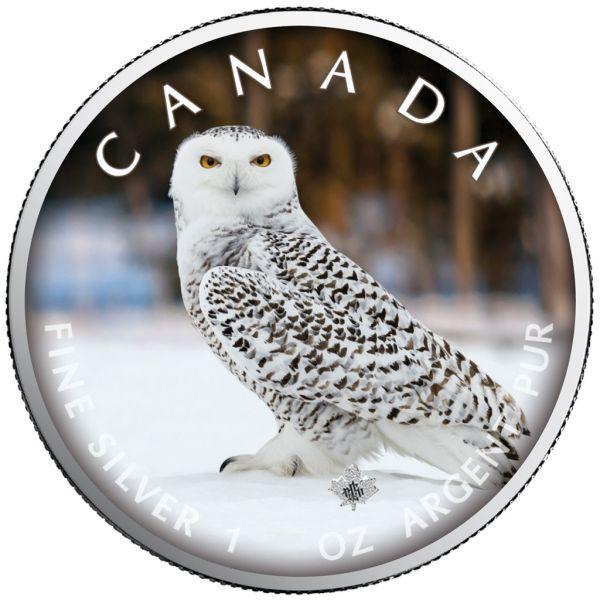 5 Dollar Kanada Trails of Wildlife - Schnee-Eule 2021 Silber St